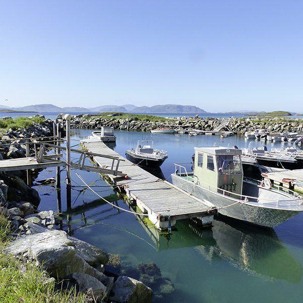 Bjørnvika Natursenter Panorama E
