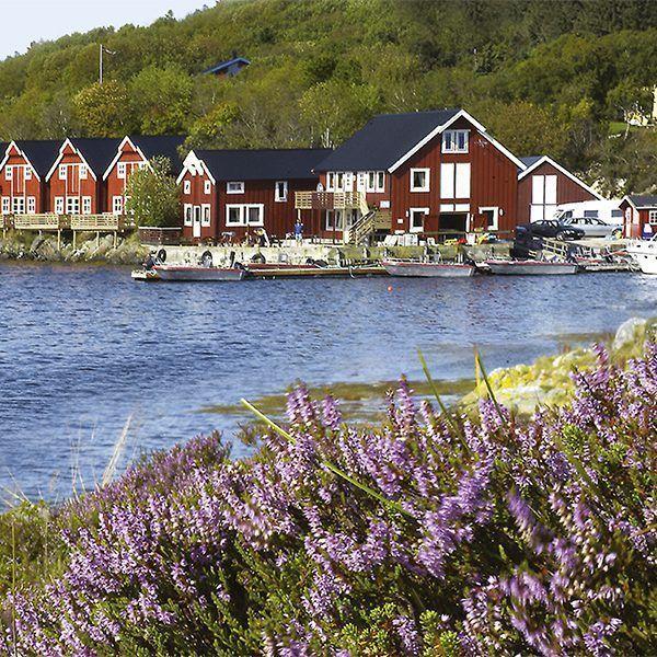 Angelreisen Norwegen 42091-140 Stadsvik Brygger Panorama E