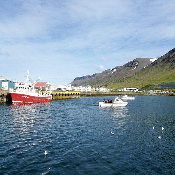Island Boote 2012