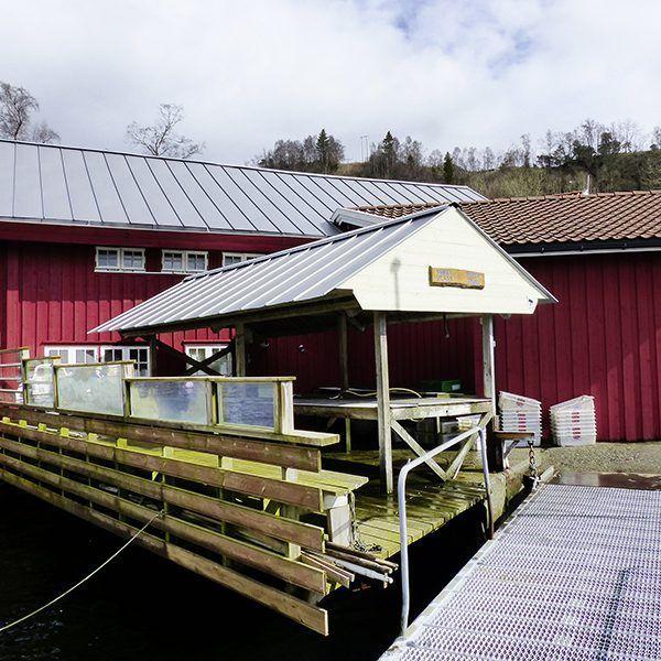 Angelreisen Norwegen 40411-428 Furre Hytter Filetierplatz
