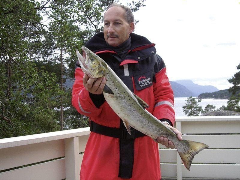 Angelreisen Norwegen 40651-653 Ropeid Lachs
