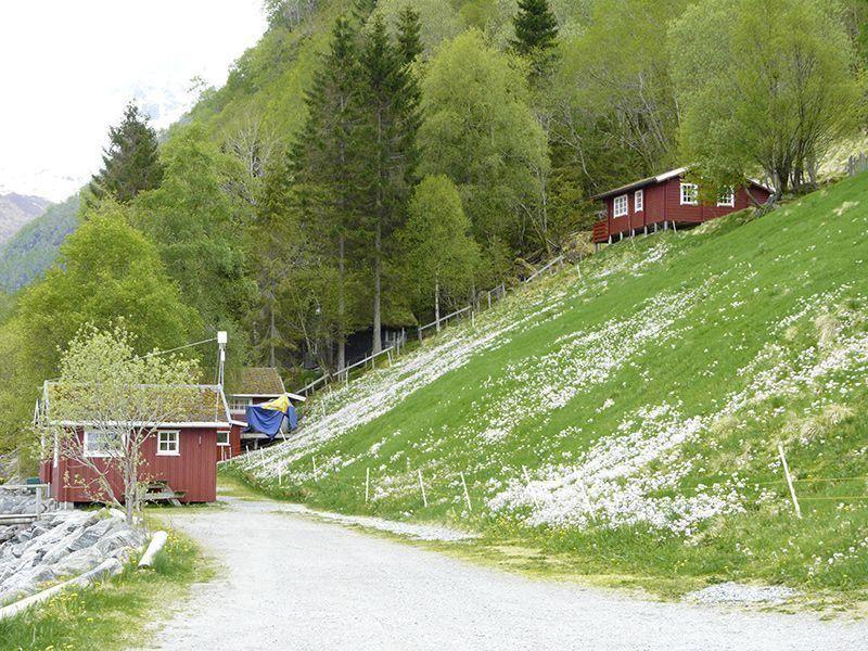 Angelreisen Norwegen 41663 Hustadnes Fjordhytter Zufahrt