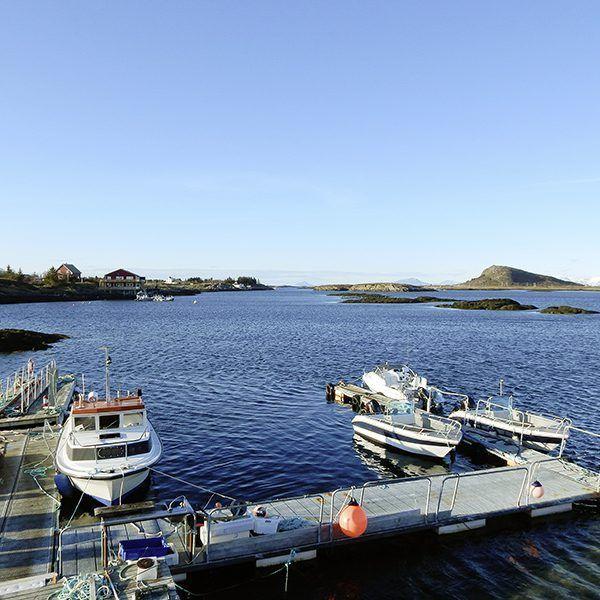 Angelreisen Norwegen 43001-005 Halibutskole Vandve Hafen
