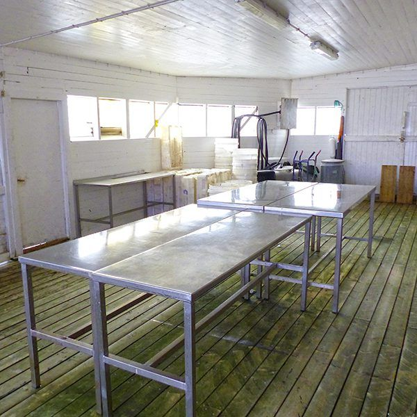 Angelreisen Norwegen 43301-315 Offersøy Feriesenter Filetierhaus innen