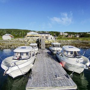 Angelreisen Norwegen 43601-43603 Hansnes Havfiske Überblick