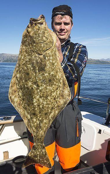 Angelreisen Norwegen 43601-603 Hansnes Havfiske Heilbutt1