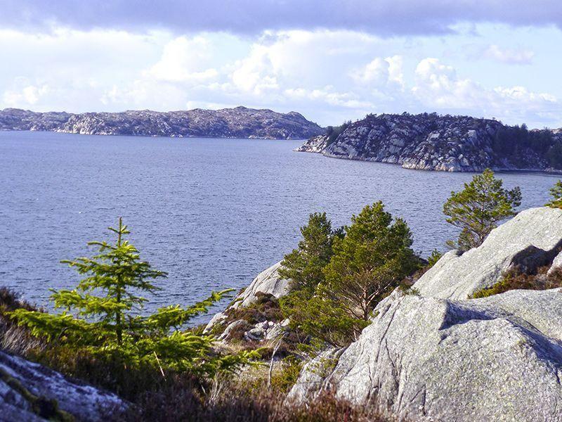 Angelreisen Norwegen 41000-41060 Rolfsnes Ausblick