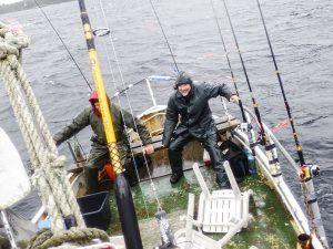 Angelreisen Norwegen 41351-353 Austgulen Fjordhytter Ausfahrt