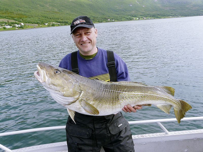Angelreisen Norwegen 42331-42335 Frosta Fjordbuer Dorsch
