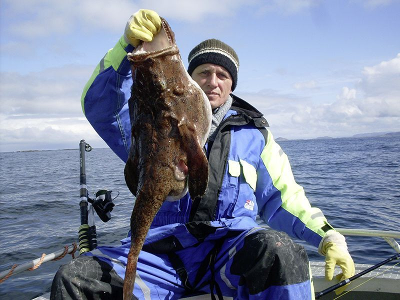 Angelreisen Norwegen 42401-420 Bessaker Seeteufel