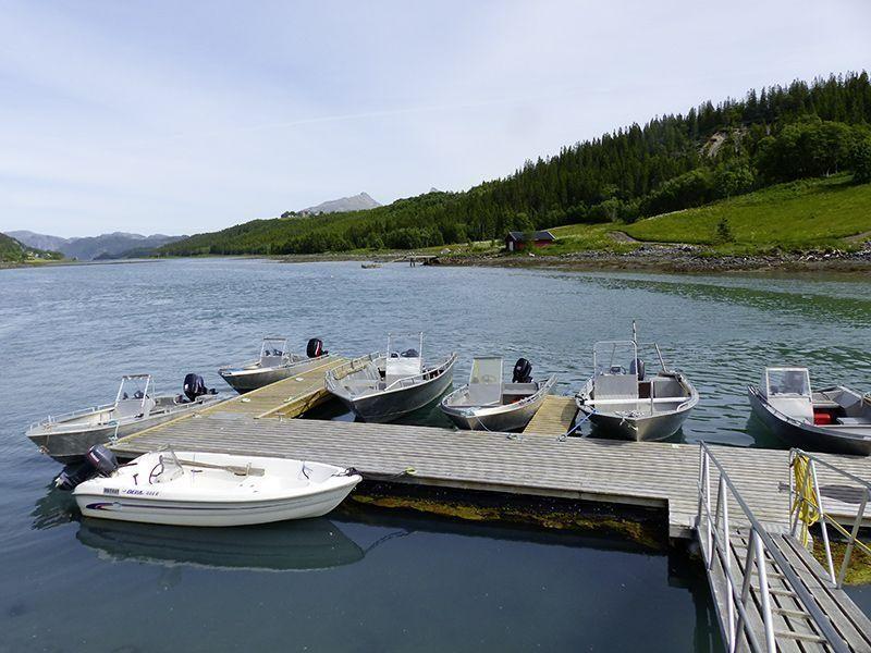 Angelreisen Norwegen 42801-807 Bogen Feriehus Hafen