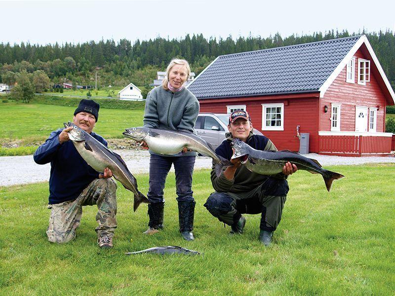 Angelreisen Norwegen 42801-807 Bogen Feriehus Köhler