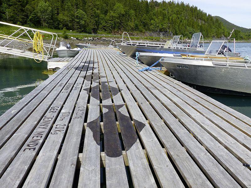 Angelreisen Norwegen 42801-807 Bogen Feriehus Steg