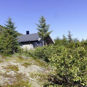 Angelreisen Norwegen 42970 Bjørnvika Natursenter Ansicht