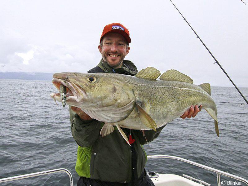 Angelreisen Norwegen 43601-43603 Hansnes Havfiske Dorsch