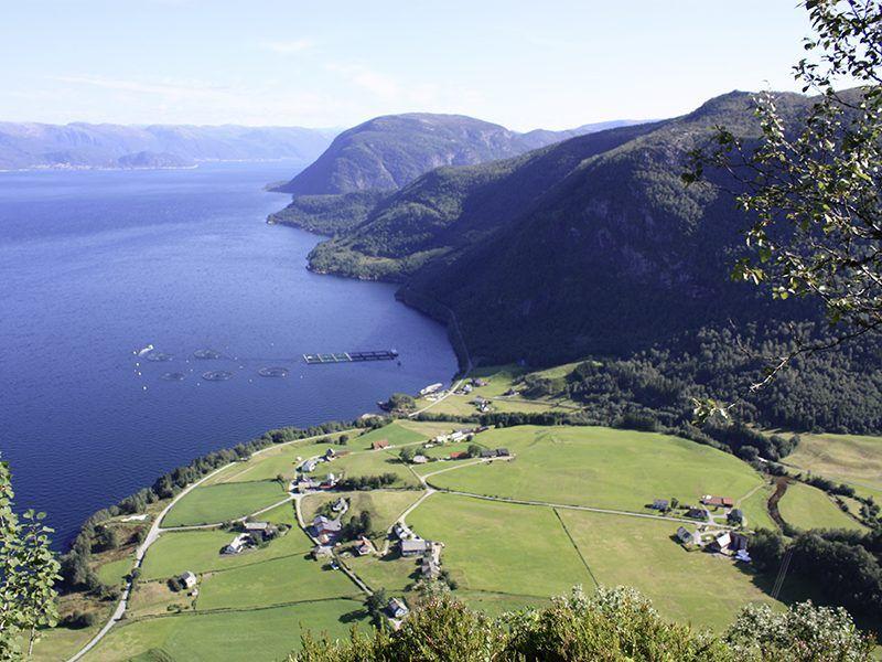 Angelreisen Norwegen 41401-403 Sognefjord Ferienhäuser Aussicht
