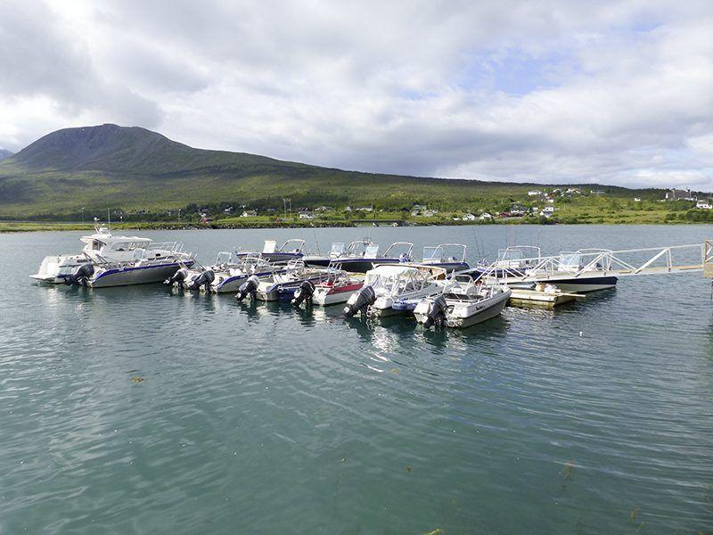 Angelreisen Norwegen 43571-43577 XLyngen Hafen