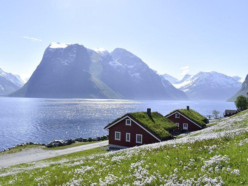 Angelreisen Norwegen 41661-41662 Hustadnes Fjordhytter Ansicht