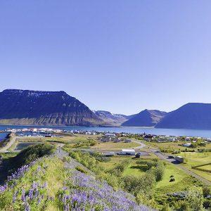 Angelreisen Island 6000 Flateyri Panorama