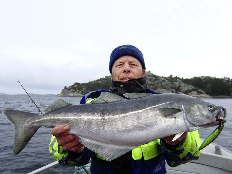 Angelreisen Norwegen 40324 Kvitsøy Seehaus Knut Köhler