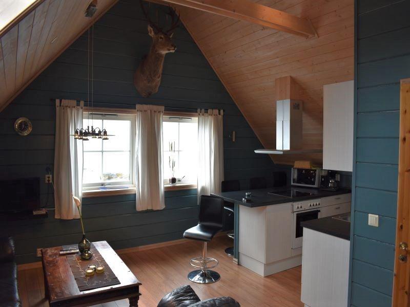 Angelreisen Norwegen 41403 Sognefjord Ferienhäuser Wohnen und Küche