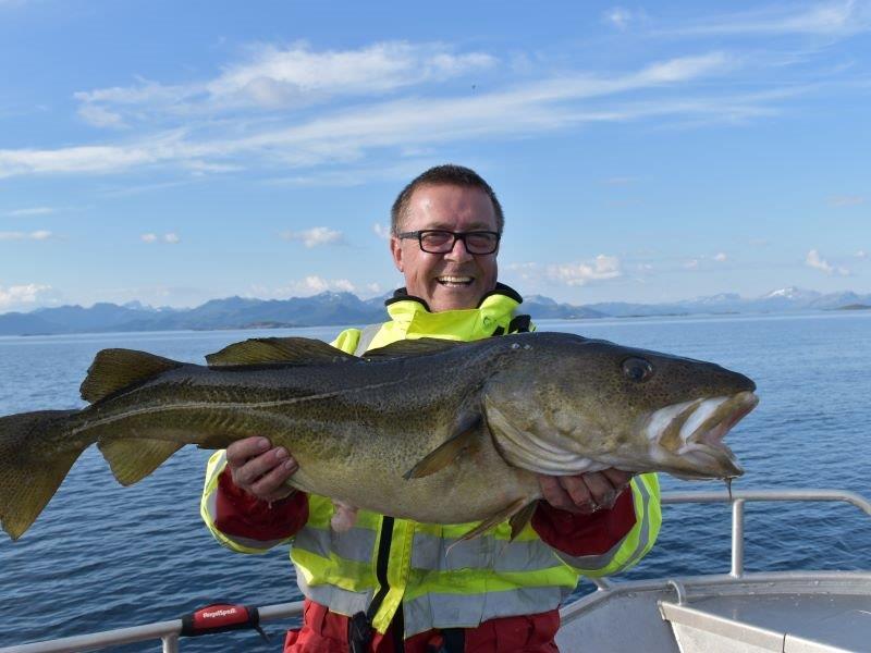 Angelreisen Norwegen 43411-43424 Sommersel Fishing Camp schöner Dorsch