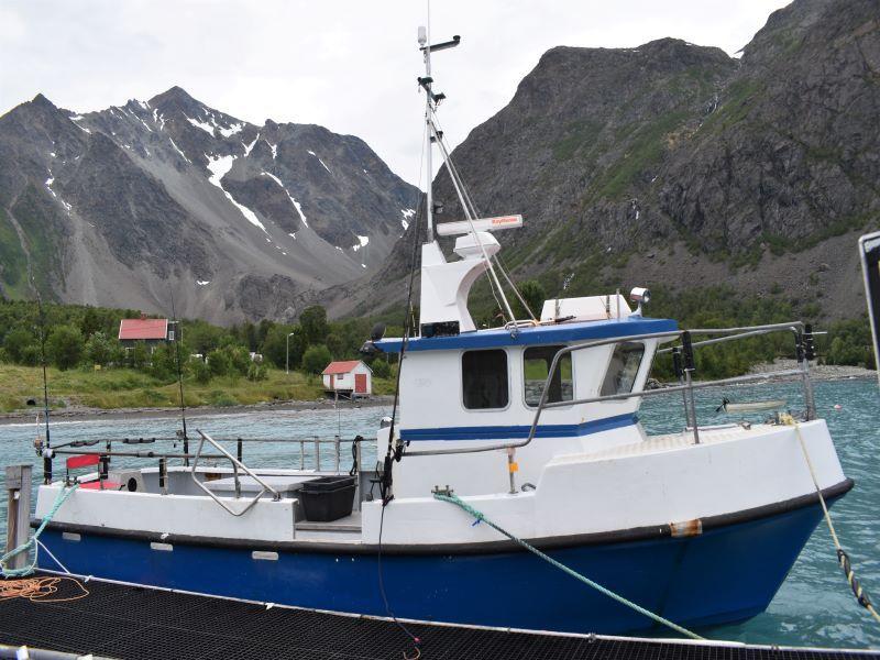 Angelreisen Norwegen Boote 43561-43564 Koppangen Brygger Kabinendieselboot 30 Fuss, 120 PS, Echolot, Kartenplotter