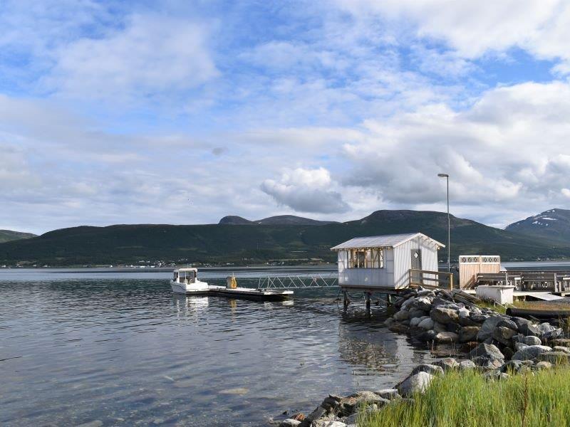 Angelreisen Norwegen 43601-43604 Hansnes Havfiske Bootssteg mit Filetierhaus