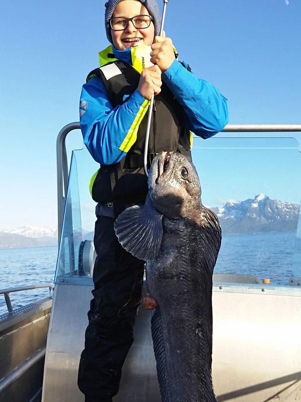 Angelreisen Norwegen 43521-43523 Senja Fishing Lodge_Steinbeißer