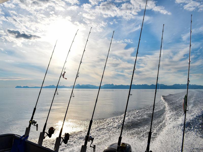 Angelreisen Norwegen 43411-43424 Sommersel Fishing Camp Ausfahrt